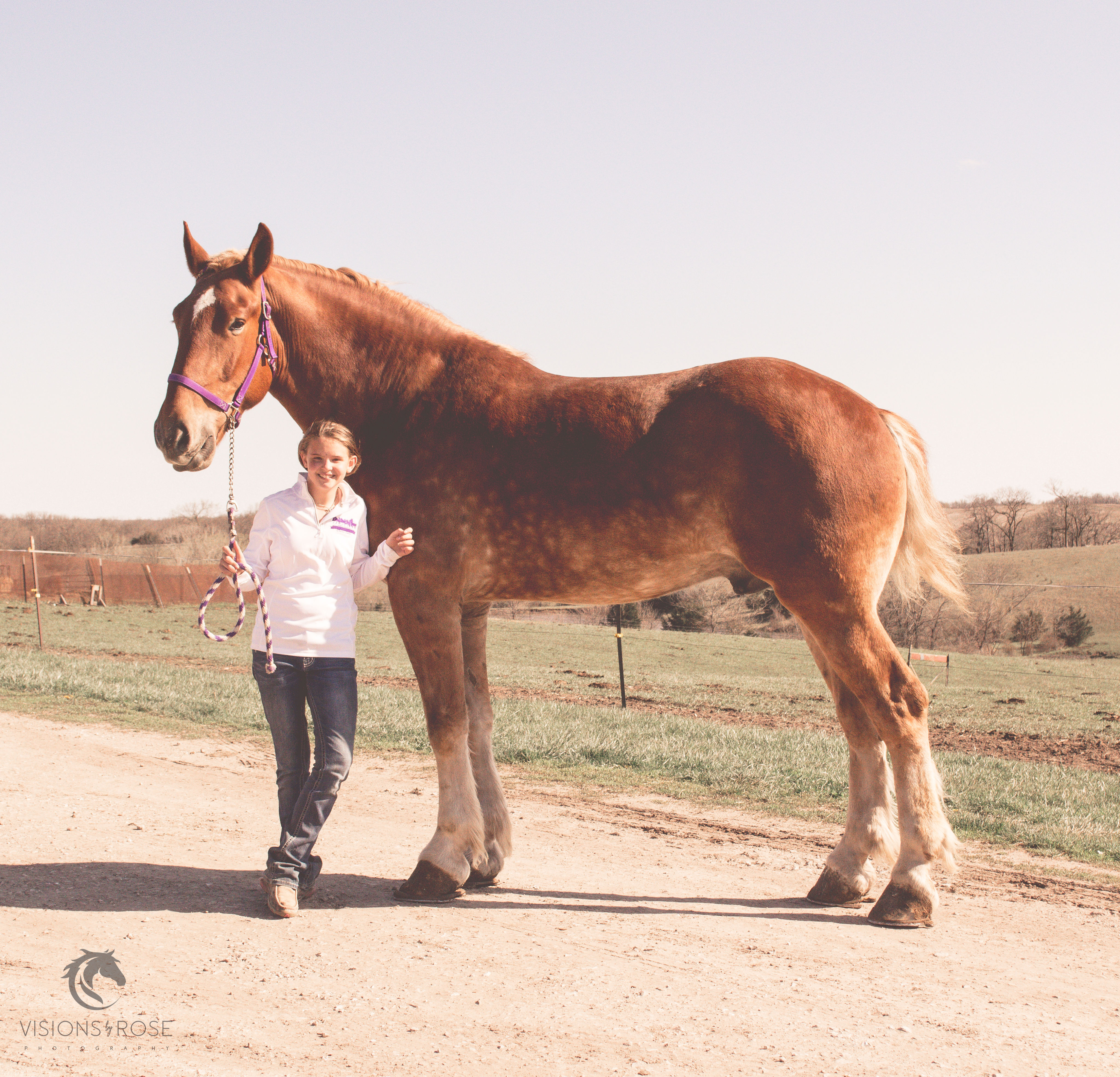 Hailey with horse wm 1